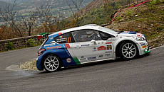 Rally Due Valli 2017 - Andreucci