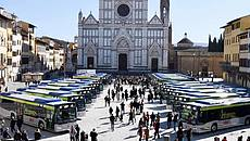 Bus ibridi Firenze
